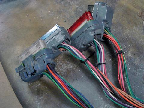 ECM plugs